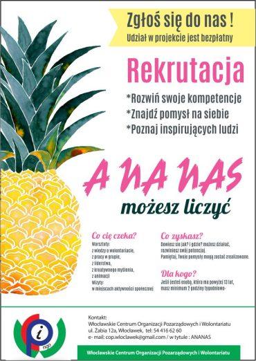 plakat_ananas